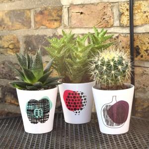 fruit plant pots