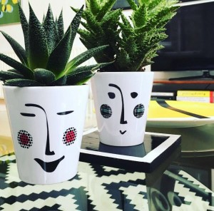 plant pot faces